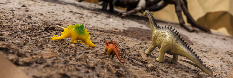 Natural History Museum Toys