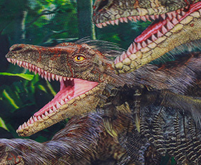NEW Velociraptor gifts