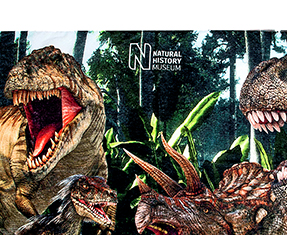 New in dinosaurs