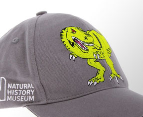 Dinosaur clothing and accessories