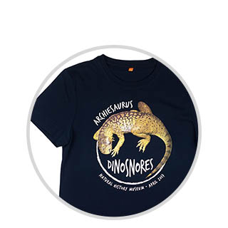 Dino Snores for kids souvenirs
