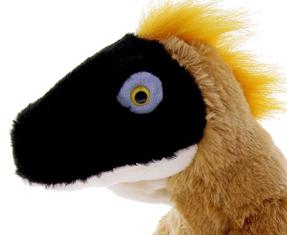 Velociraptor gifts