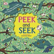 Peek and Seek baby book
