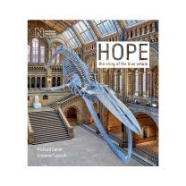 Hope: The story of the blue whale
