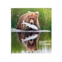 Wildlife Photographer Of The Year Highlights Vol 6 2020