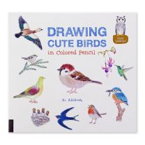 Drawing Cute Birds In Coloured Pencil