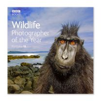 Wildlife Photographer of the Year 2008: Portfolio 18