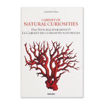 Cabinet of Natural Curiosities book