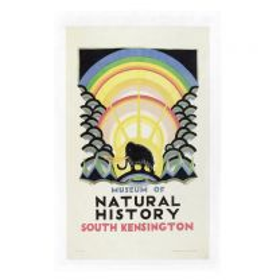 Vintage design Natural History Museum tea towel