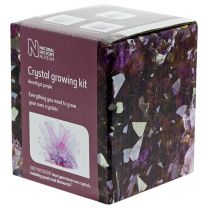 Amethyst purple crystal growing kit