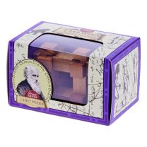 Darwin chest wooden puzzle
