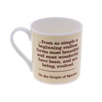 From so simple a beginning... Darwin quote 'I think' mug