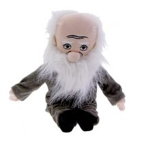 Darwin thinker doll