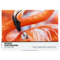 Fauna notecard set - Wildlife Photographer of the Year 2019