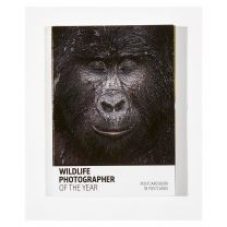 Wildlife Photographer of the Year 57 postcard book