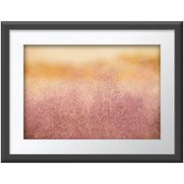 Grass at Sunrise wall print
