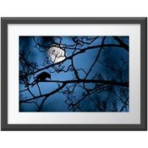 The Moon and the Crow wall print