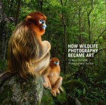 How Wildlife Photography Became Art: 55 Years of Wildlife Photographer of the Year