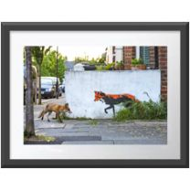 Fox Meets Fox wall print