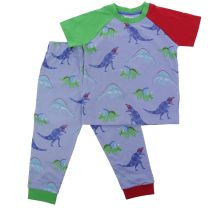 Lilly and Sid dinosaur pattern pyjama top for kids