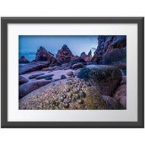 Limpet exposure wall print