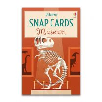 Museum Snap (Snap Cards)