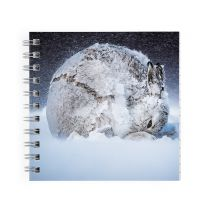Hare Ball square notebook: Wildlife Photographer of the Year 2020