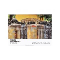 Big Cats notecard set: Wildlife Photographer of the Year 2020