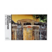 The Village Cat 750 piece jigsaw puzzle: Wildlife Photographer of the Year 2020