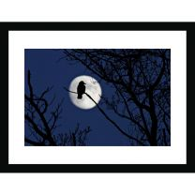 Moon crow wall print