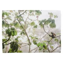 Canopy Hang-out tea towel - Wildlife Photographer of the Year 2019