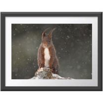 Under the Snow wall print