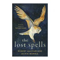 Lost Spells Book