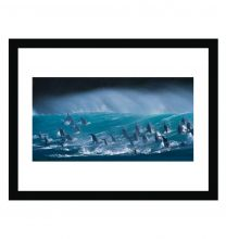 Surfing delight wall print