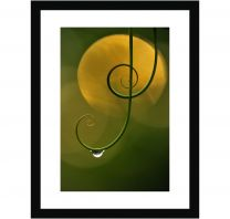Natural harmony wall print