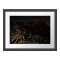 Wolf Mountain wall print