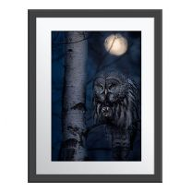 Night Hunter wall print