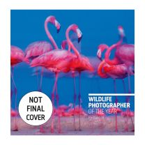 Wildlife Photographer of the Year Portfolio 31front cover (not final)