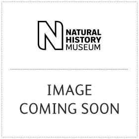 Red Natural History Museum pocket magnifier keyring