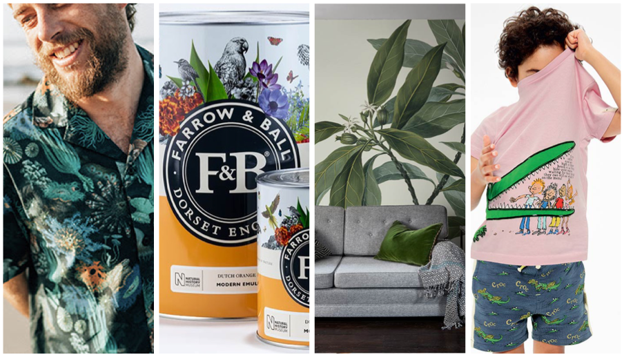 A man wearing a shirt from our Finisterre collaboration, two paint cans from our Farrow and Ball collaboration, a living room containing a sofa, a side table and a lamp with botanical illustration wallpaper from our Surface View collaboration.