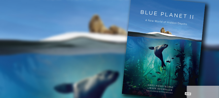 Blue Planet II book against blurred ocean background