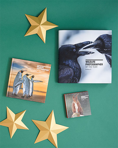 Wildlife Photographer of the Year portfolio and diaries sit on a green background alongside gold paper stars.
