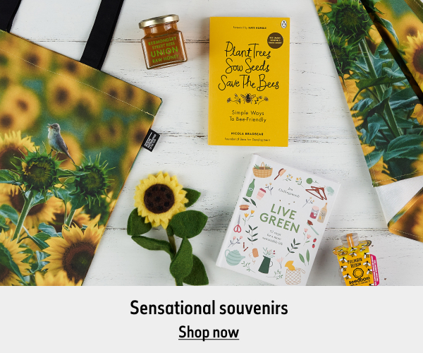 A range of sunflower items lay on a white wooden background. The text reads 'Sensational souvenirs. Shop now.'