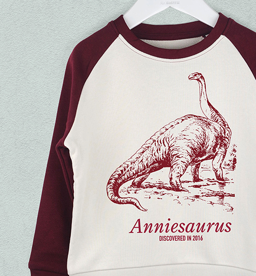A maroon and cream personalised Brachiosaurus jumper hanging up against a pale blue wall
