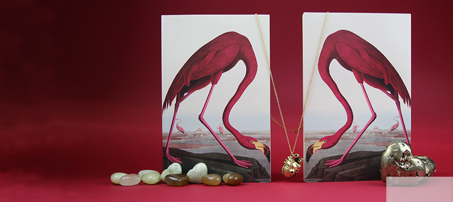 Two Audubon Flamingo notebooks facing each other with a brass anatomical heart between them and mineral hearts surrounding them.