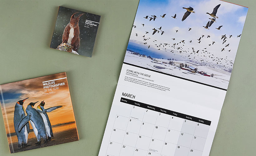 Two Wildlife Photographer of the Year 2022 diaries lay alongside a Wildlife Photographer of the Year 2022 calendar on a green background.