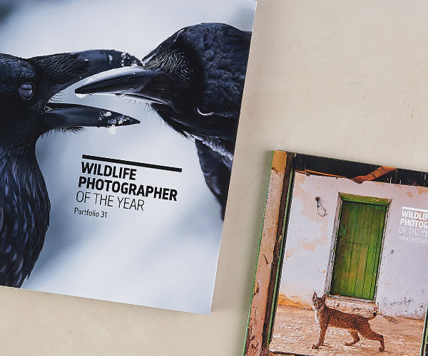 The Wildlife Photographer of the Year Portfolio and Highlights book lay on a cream background.