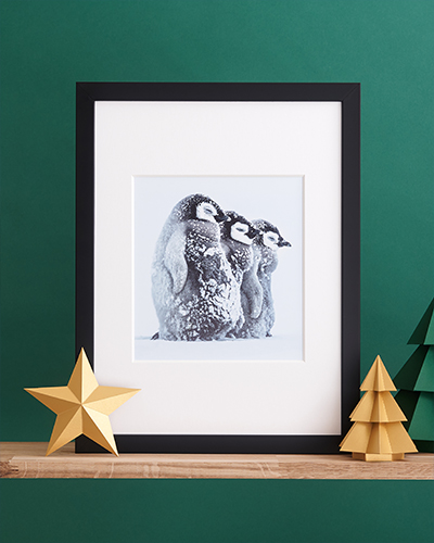 Braving the storm wall print sits on a wooden shelf in front of a green background alongside paper trees and stars.