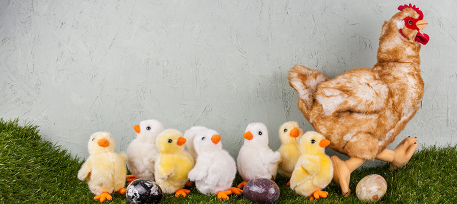 Chicken and chicks soft toys