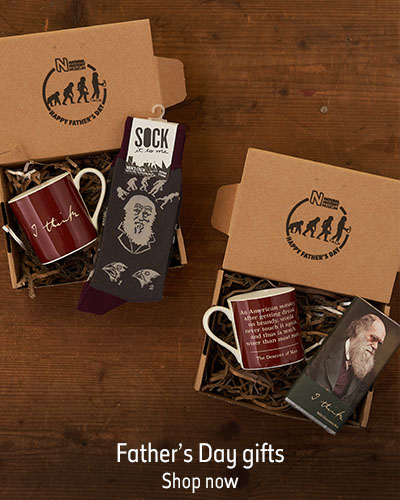 Two Charles Darwin gift sets containing a mug and chocolate bar lay open on a dark wooden background. The text reads Father's Day gifts. Shop now.